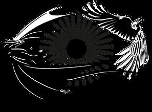 raven and drake transparent logo.png