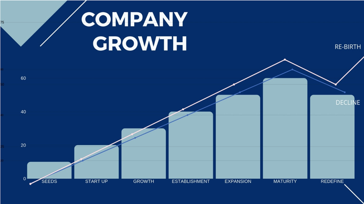 company growth chart.png