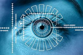 Business intelligence - Mentor Capital Holdings