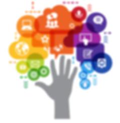 EVO online marketing management