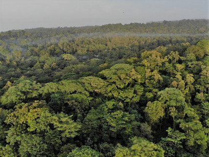 our reserve aerial view