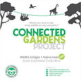 connected gardens project.jpg