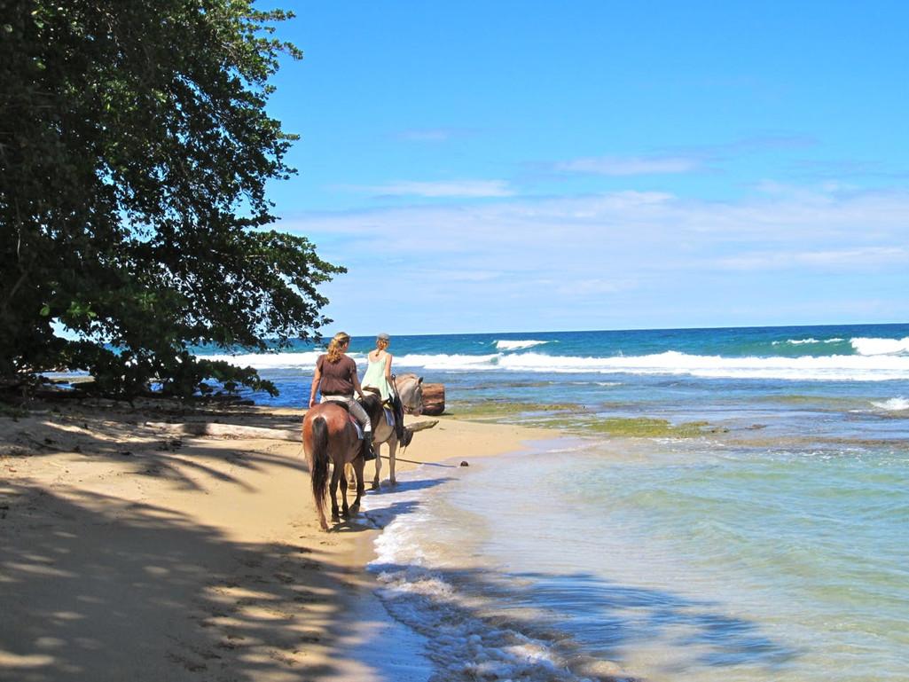 Ride horsing on the beach
