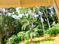 Vista de Birds Room