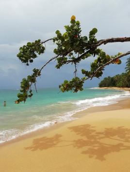 Arrecife beach after the storm