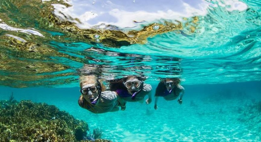 snorkeling in Punta Uva