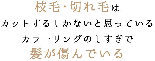 キラ髪 焼津市