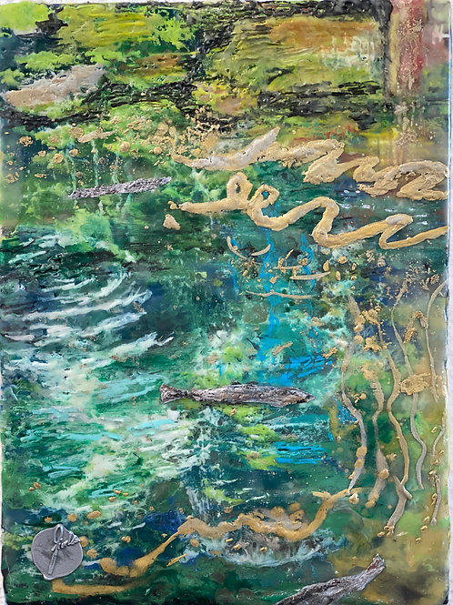 Forelle Blausee (GiorDana)