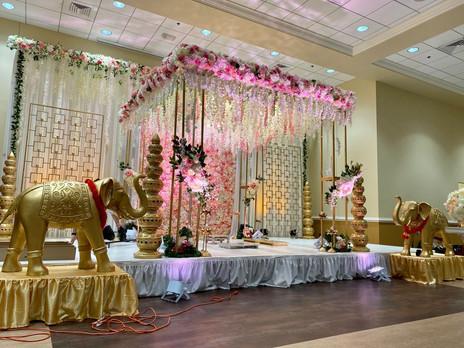 Royal Elephants at Wedding.jpeg