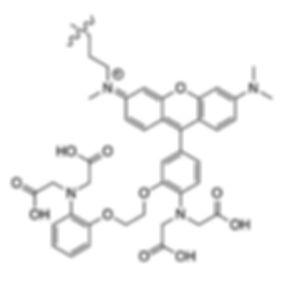 Esya Molecular Probes