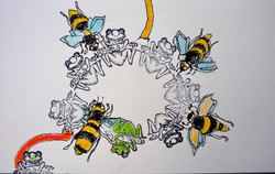Bees and Frogs