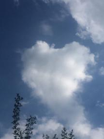 Herz.JPG