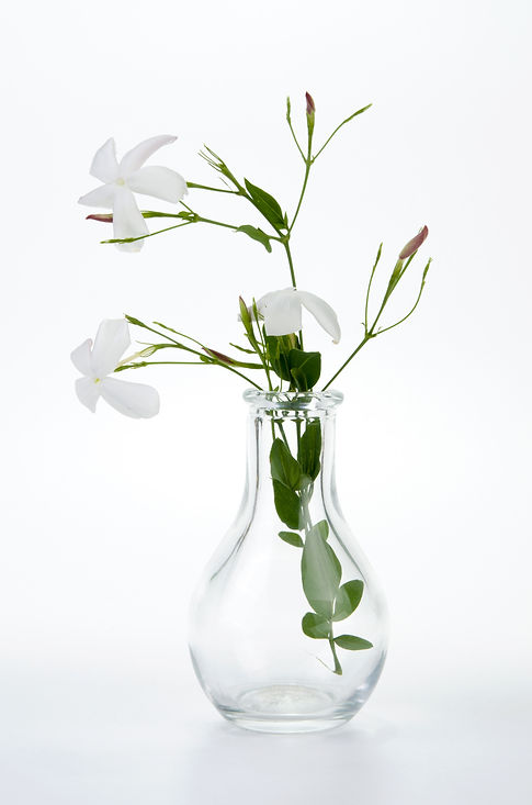 Jasmine in glass vase.jpg