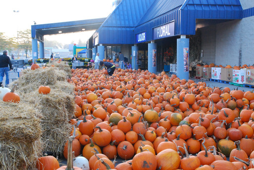 Pumpkinfest2014 055.JPG