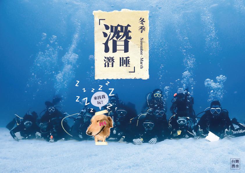 【台灣潛水 冬季濳濳睡】