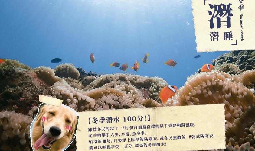 【冬季潛水 100分!】