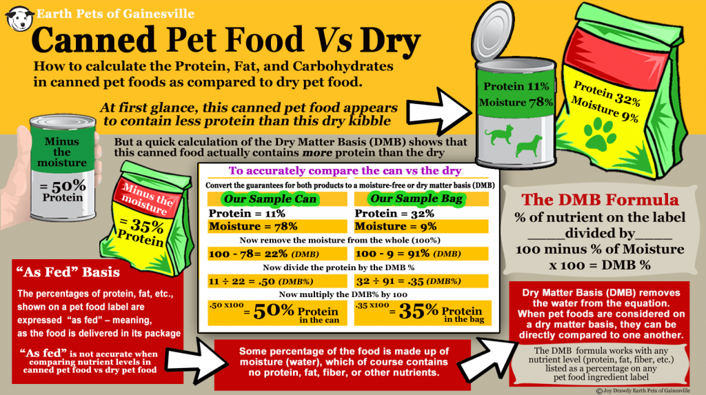 Pet-Food-DMB-Infographic-1024x573.png
