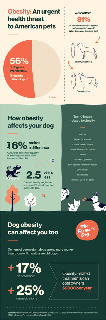 Obesity_Infographic_v3-02-scaled.jpg