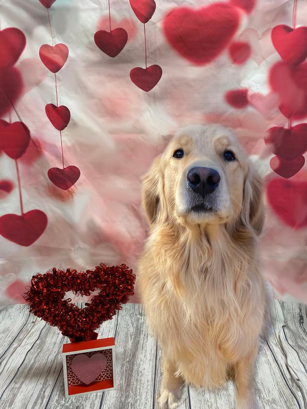 Chloe Valentine's Day 2020