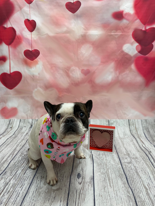 Max Valentine's Day 2020