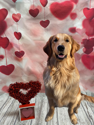 Beau Valentine's Day 2020