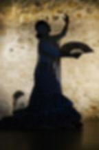 flamenco-1046485_960_720.jpg