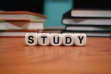 study .jpg