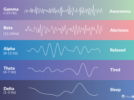 How Does Our Brain Work? Brainwave Frequencies Explained