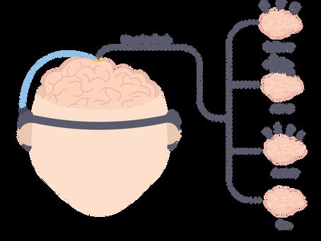 A Brief History of Neurofeedback