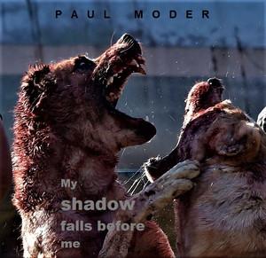 New crime thriller novel