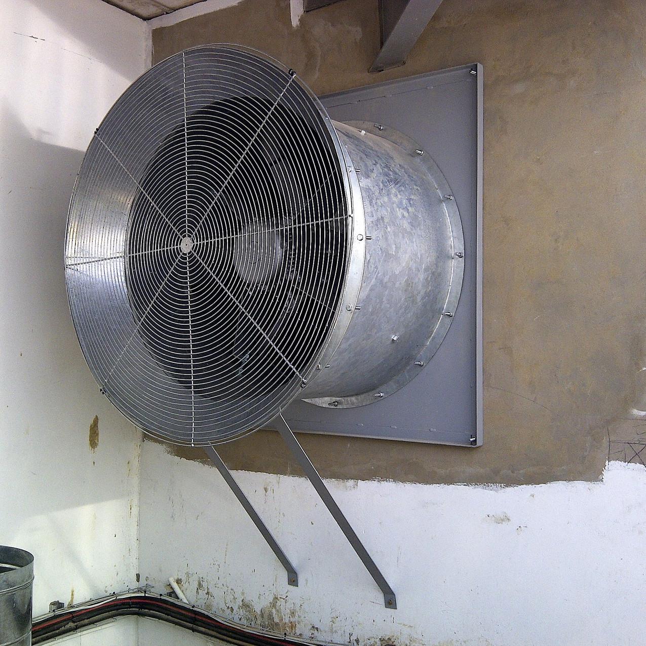 IMG-20111110-00356