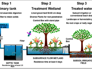 Can our soils help us clean our waste water? You Decide!