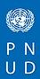 PNUDBannierSiteWeb.png