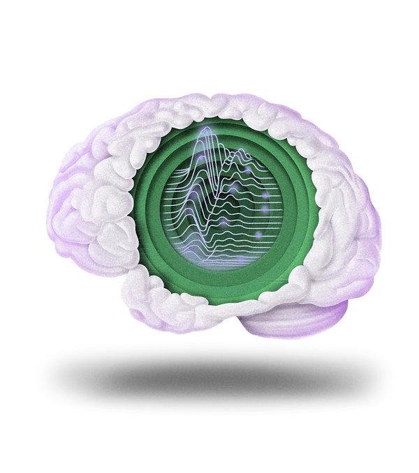 telegraph brain Green.jpg