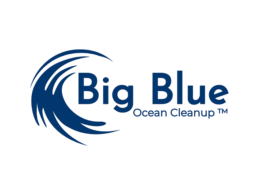 ocean cleaning spende