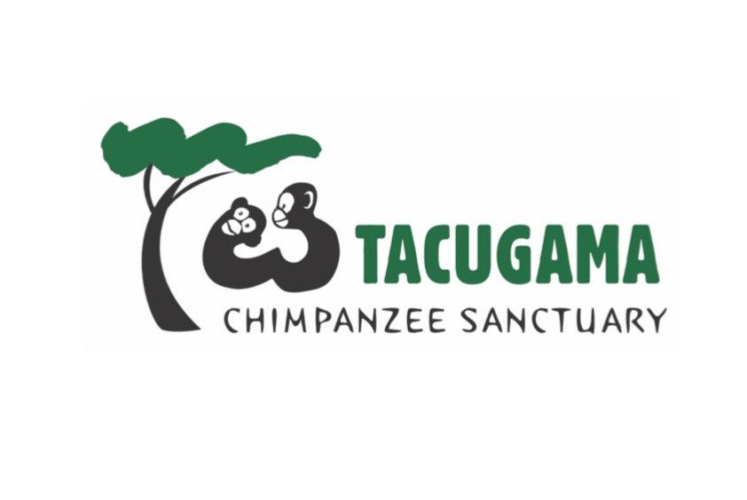 tacugama chimpanzee santuary