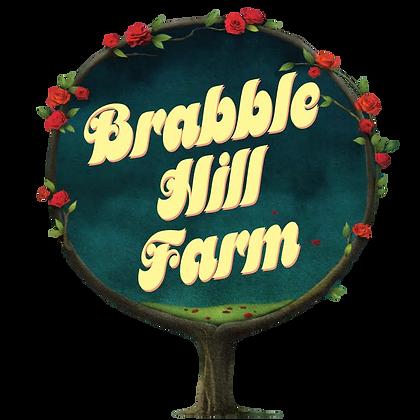BHF logo circle.png