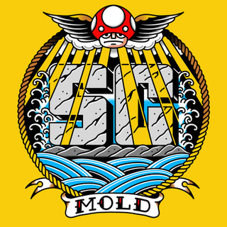 WDI018-Mold.jpg