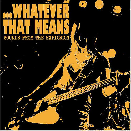 """...Whatever That Means """"Sounds From The Explosion"""" CD"""