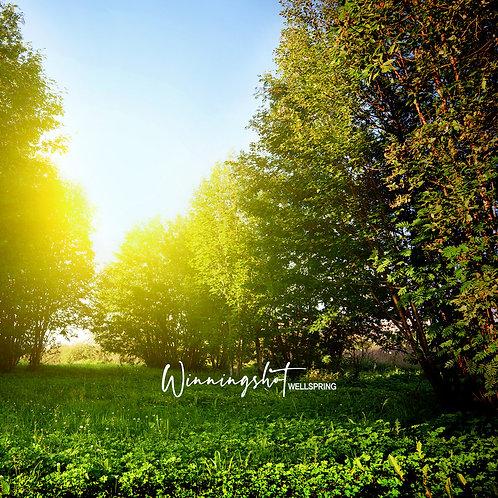 "WinningShot ""Wellspring"" EP CD"