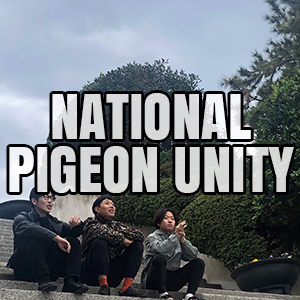 NPU.png