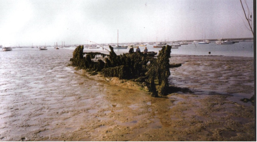 The hulk of Pioneer Sailing Ship lies in the mud.