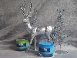 Christmas set-up (15)