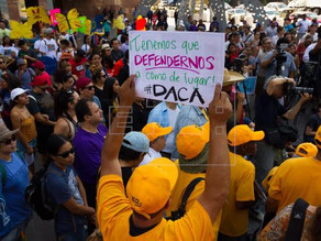 """Beneficiarios de DACA celebran victoria sobre """"cruel"""" Administración de Trump"""