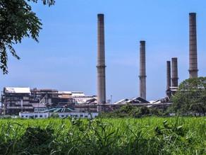 MEXICO:  Sector azucarero mexicano se activa para producir alcohol y gel antibacteria • GUATEMALA: C