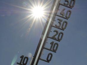 El último lustro ha sido el más cálido de la historia moderna a nivel global