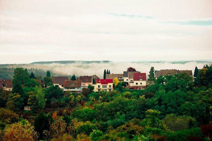 A little morning fog.jpg.jpg