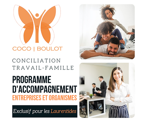 Programme d'accompagnement Facebook (15)