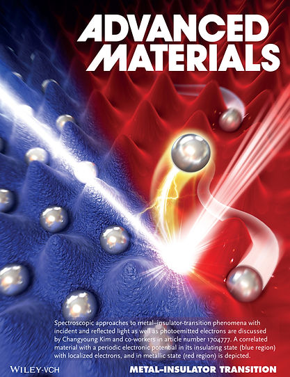 Kim_et_al-2018-Advanced_Materials.jpg