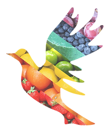 Nutrition & Health - logo only 2.png